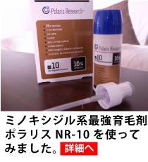 ポラリスNR-10体験レビュー