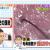 ナイナイ岡村の頭皮の血流が悪く、毛母細胞が死にかかっている
